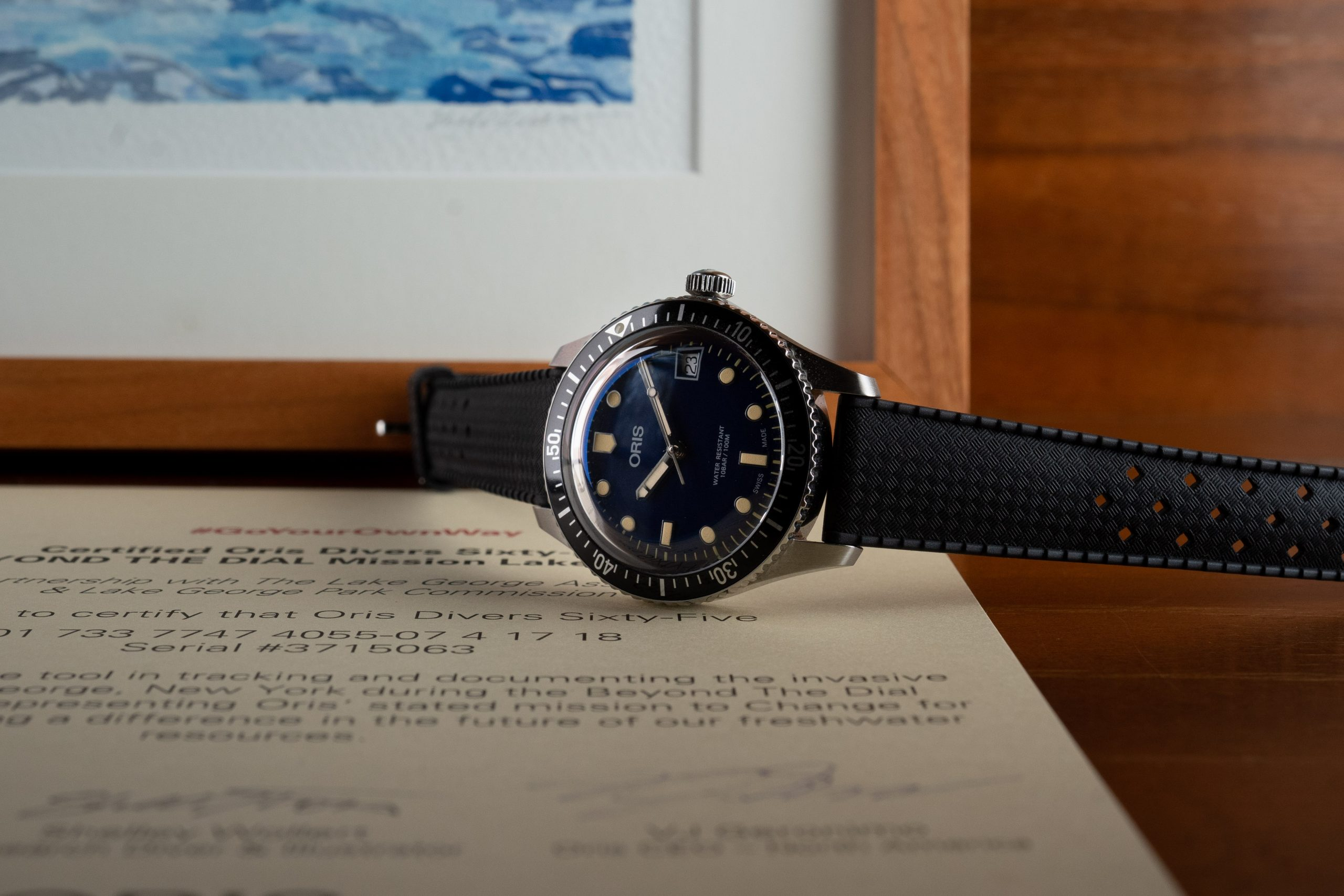 The Mission Lake George AUCTIONS – Support Freshwater Health & Vie For Two Oris Divers 65s.